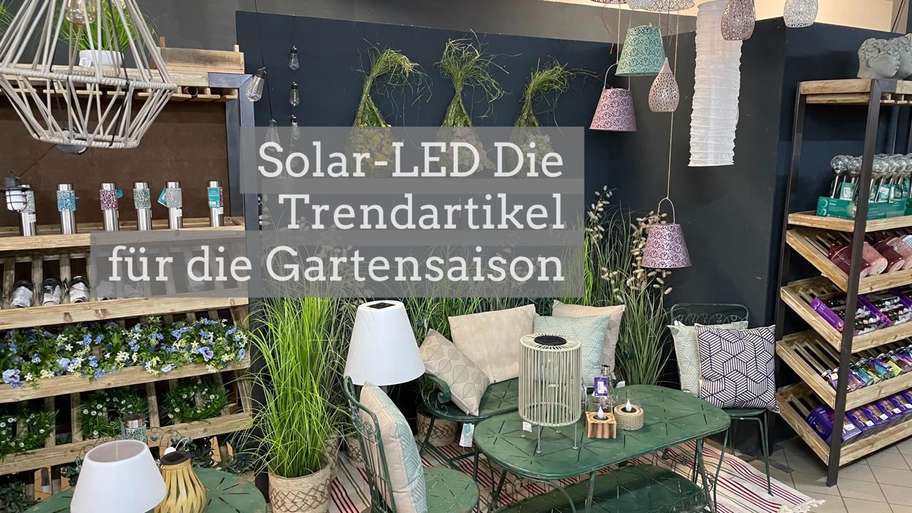 Solar-LED-Garten